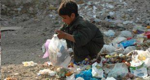 دور الأمم المتحدة في محاربة ظاهرة أطفال الشوارع: الاتفاقيات والميكانيزمات
